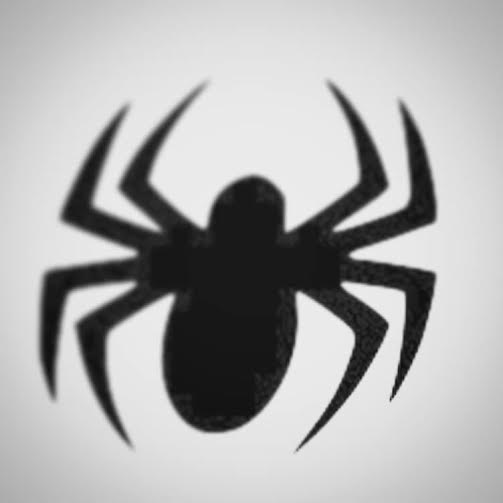 The Spirit-Symbol Of The Spider – the LITTLE THING5
